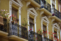 Andalucia Geraniums hang over iron balconies of traditional houses von Danita Delimont