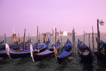 Gondolas ready for tourists in Venice Italy von Danita Delimont