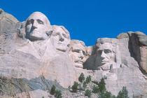 Mount Rushmore by Danita Delimont