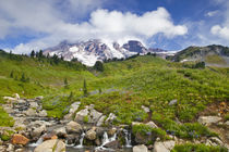 Edith Creek and wildflower meadows at Paradise in Mount Rainier National Park in Washington by Danita Delimont