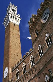 Torre del Mangia in Piazza del Campo by Danita Delimont