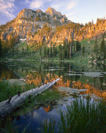 Wasatch-Cache National Forest by Danita Delimont