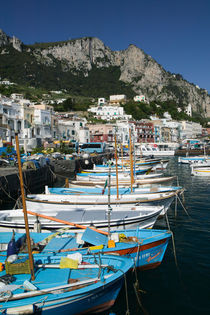 CAPRI: Marina di Caterola / Capri Town Port von Danita Delimont