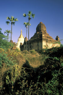 Kubyauk-Gyi Temple by Danita Delimont
