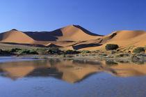 Sossusvlei Dunes von Danita Delimont