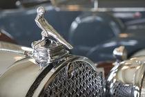 1930s Packard Hood Ornament von Danita Delimont
