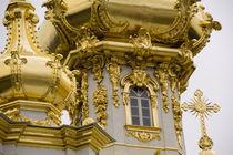 Peterhof Palace (aka Petrodvorets) building detail von Danita Delimont