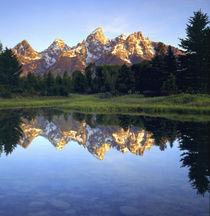 Grand Teton Mountains reflecting in the Snake River at sunrise by Danita Delimont