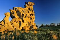 Medicine Rocks State Park near Ekalaka Montana by Danita Delimont