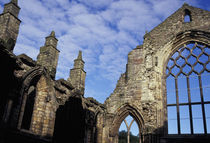 Ruined Abbey at Holyroodhouse Palace von Danita Delimont
