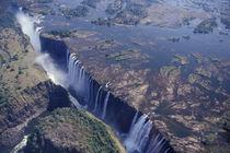 Victoria Falls by Danita Delimont