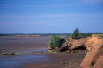Bay of Fundy coastline by Danita Delimont