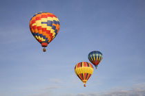 Hot air balloons in flight by Danita Delimont