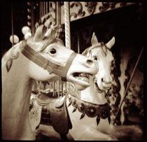 Carosel horses in FontaineblFrance by Danita Delimont