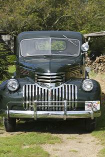 1930's Cheverolet Pickup Truck von Danita Delimont
