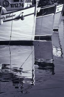 White image von Danita Delimont