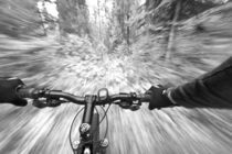 Cruising down a buff section of singletrack trail from the riders perspective near West Glacier Montana by Danita Delimont