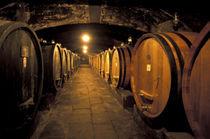 Chianti cellars von Danita Delimont