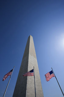 American flags at the Washington Monument by Danita Delimont