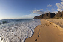 Beach landscape by Danita Delimont