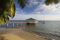Pier at Coco de Mer Hotel von Danita Delimont