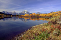 Moran and Oxbow Bend by Danita Delimont