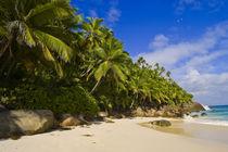 Anse Victorin Beach by Danita Delimont