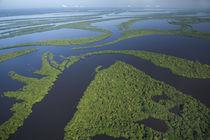 Amazonia BRAZIL by Danita Delimont