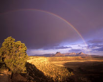 Rainbow from Gooseberry Mesa looking to Smithsonian Butte near Virgin Utah by Danita Delimont