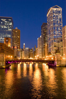 Skyline and Chicago River at Night by Danita Delimont