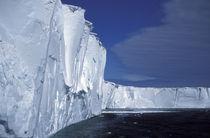 Mertz Glacier von Danita Delimont