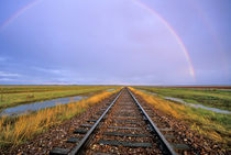 Rainbow over railroad tracks near Fairfield Montana von Danita Delimont
