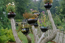 Teapots sprout from branches in a whimsical display at the Fantasy Garden in KIngsbrae Garden von Danita Delimont