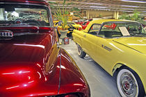 Vintage cars in Tallahassee Automobile Museum Florida by Danita Delimont