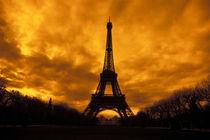 Eiffel Tower von Danita Delimont