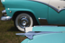 1950s-era Ford cars at an antique car show by Danita Delimont