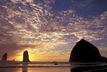Canon Beach with haystack rock and needles by Danita Delimont
