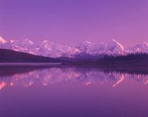 Evening light on Alaska Range from north end of Wonder Lake by Danita Delimont