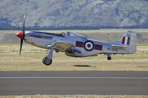 P-51 Mustang - American Fighter Plane by Danita Delimont