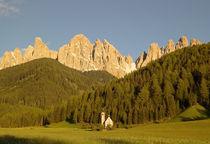 Italy von Danita Delimont