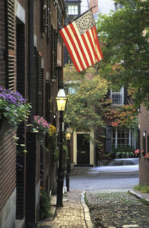 Cobblestone street and historic homes by Danita Delimont