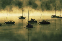 The early morning sun burns off a mist on Lake Dillon where boats lie at anchor by Danita Delimont