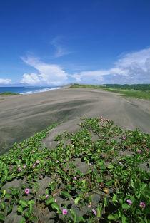 Fiji von Danita Delimont