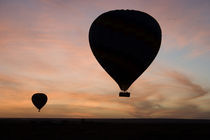 Two balloons glide over the plains of the Masai Mara at sunrise by Danita Delimont