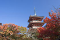 Pagoda in Autumn colour von Danita Delimont