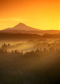 Oregon as seen from Jonsrud viewpoint von Danita Delimont