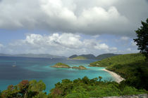 Overview of Trunk Bay by Danita Delimont