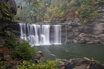 Cumberland Falls on the Cumberland River in Cumberland Falls State Resort Park by Danita Delimont
