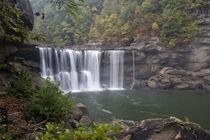 Cumberland Falls on the Cumberland River in Cumberland Falls State Resort Park by Danita Delimont