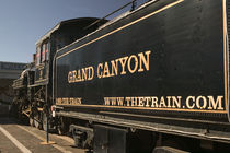 Williams: Grand Canyon Railroad Train by Danita Delimont